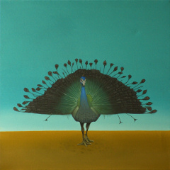 Pfau, abgebrannt, painting, oil on canvas, Matthias Fitzi